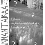Tiedote Rannantaikaa lehdelle 1/2017